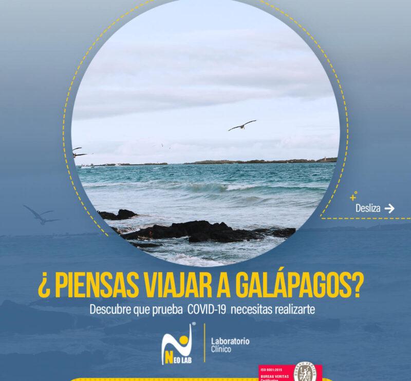 Neolab_laboratorio_clínico_pruebas_PCR_galápagos